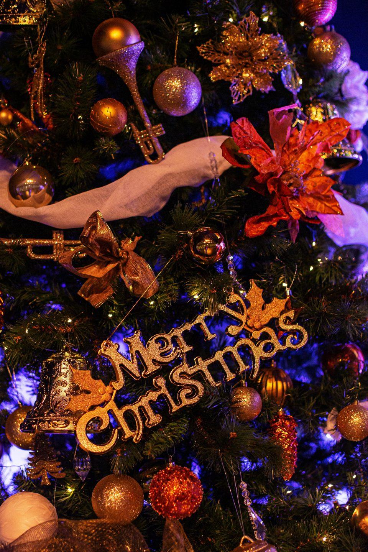 Merry Christmas Mr Emefiele